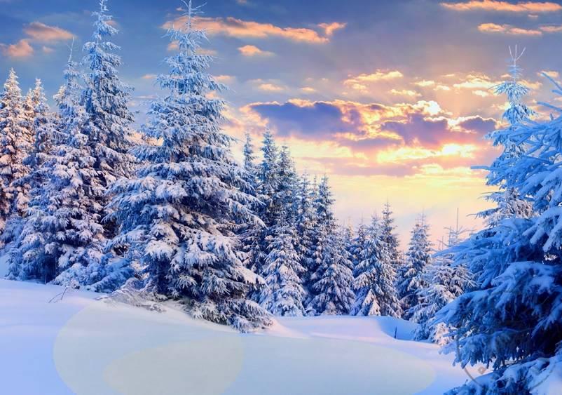 Yağlıboya Kar Manzarası Nasıl Yapılır Kar Resmi Nasıl çizilir