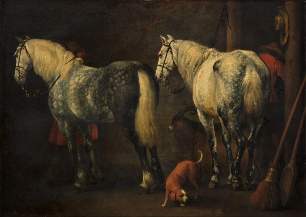 Abraham van Calraet, Two Horse, Canvas, Abraham van Calraet, kanvas tablo, canvas print sales