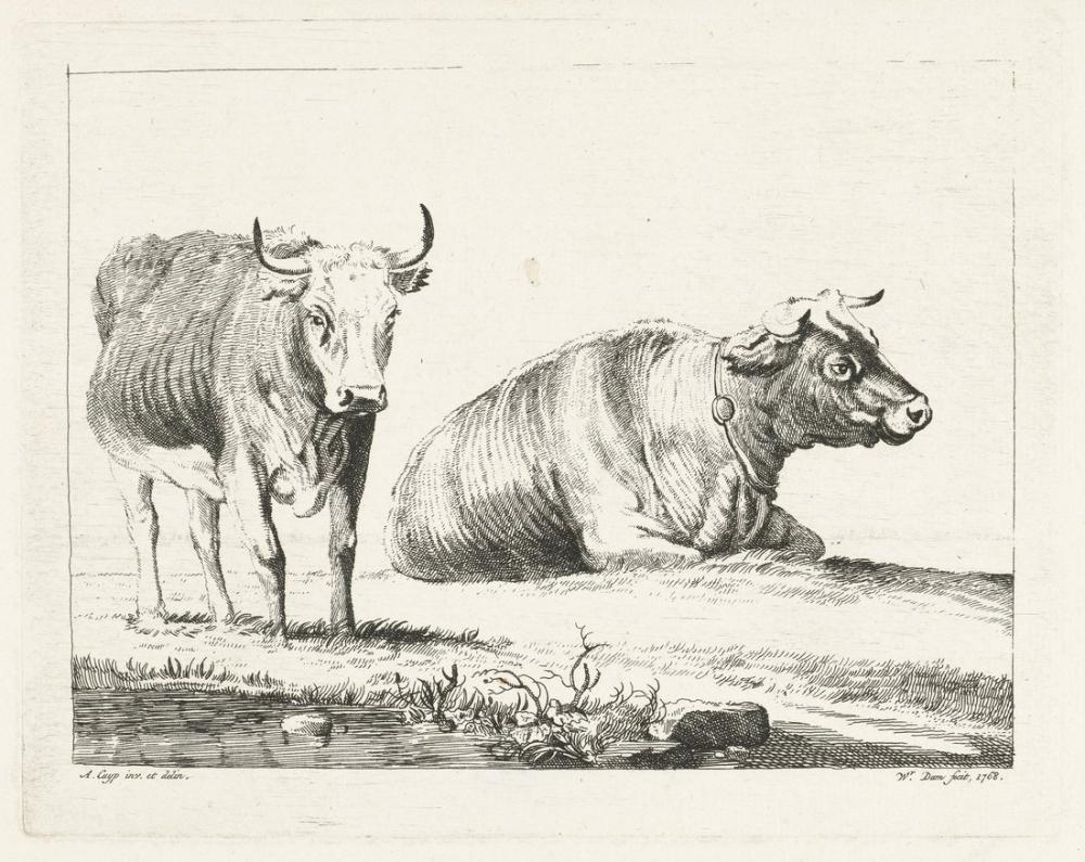 Aelbert Cuyp, Cow Standing and Lying Down, Canvas, Aelbert Cuyp, kanvas tablo, canvas print sales