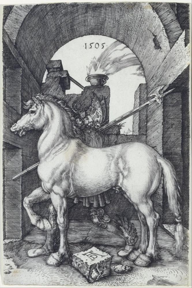 Albrecht Dürer Küçük At, Kanvas Tablo, Albrecht Dürer