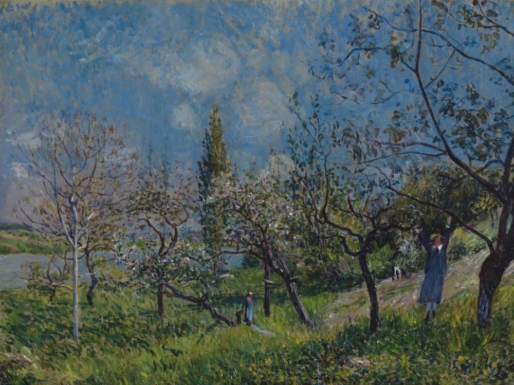 Alfred Sisley Bahar Orchard, Kanvas Tablo, Alfred Sisley, kanvas tablo, canvas print sales