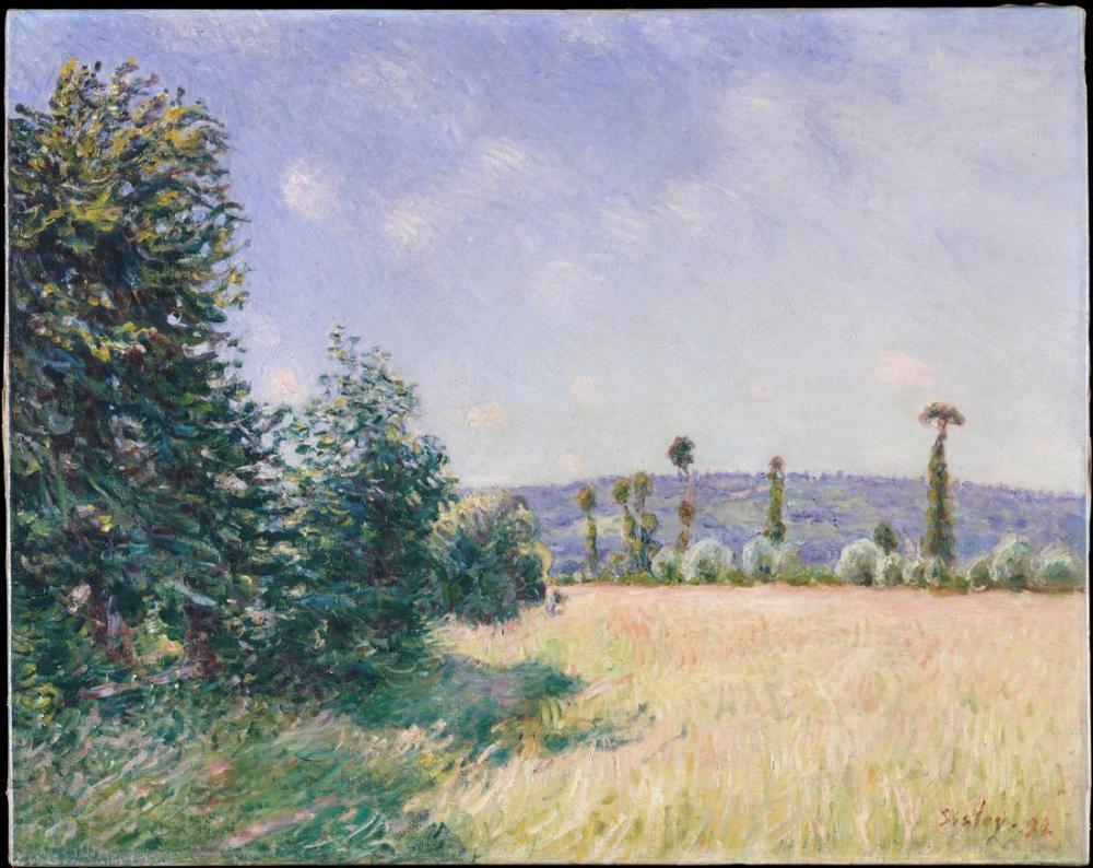 Alfred Sisley Sabah Güneşi Sahurs Meadows, Kanvas Tablo, Alfred Sisley