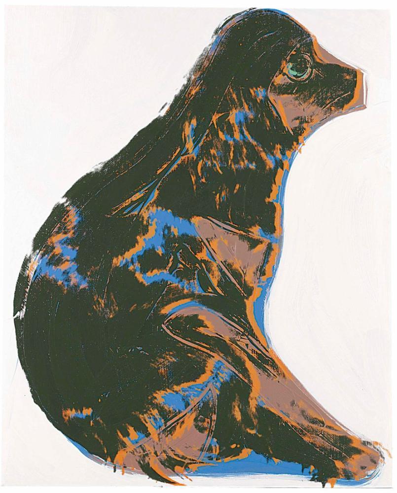 Andy Warhol Kedileri ve Köpekleri, Kanvas Tablo, Andy Warhol