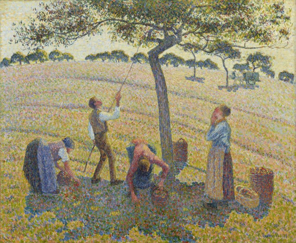 Camille Pissarro Elma Hasat, Kanvas Tablo, Camille Pissarro