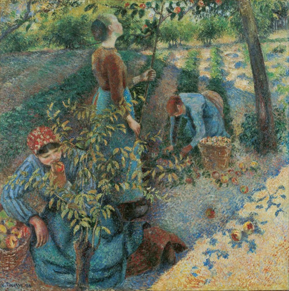 Camille Pissarro Apple Picking, Canvas, Camille Pissarro, kanvas tablo, canvas print sales
