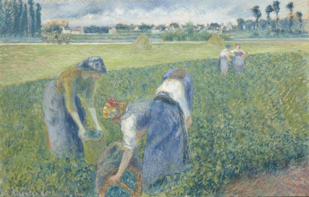 Camille Pissarro Pontoise Alanlarında Çalışan Köylüler, Kanvas Tablo, Camille Pissarro, kanvas tablo, canvas print sales