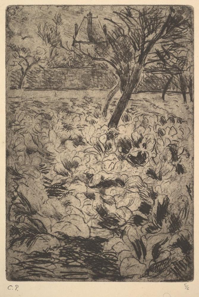 Camille Pissarro Lahana Tarlası, Kanvas Tablo, Camille Pissarro