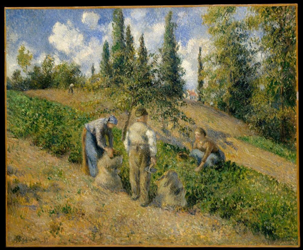 Camille Pissarro Hasat Pontoise, Kanvas Tablo, Camille Pissarro, kanvas tablo, canvas print sales
