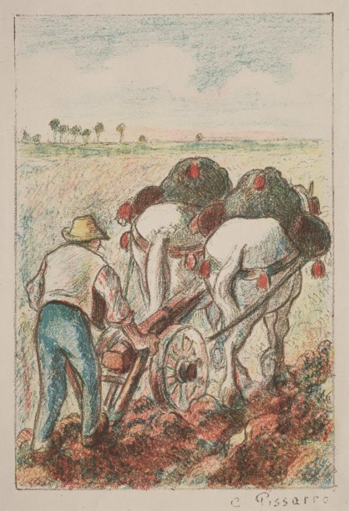 Camille Pissarro Pulluk, Kanvas Tablo, Camille Pissarro