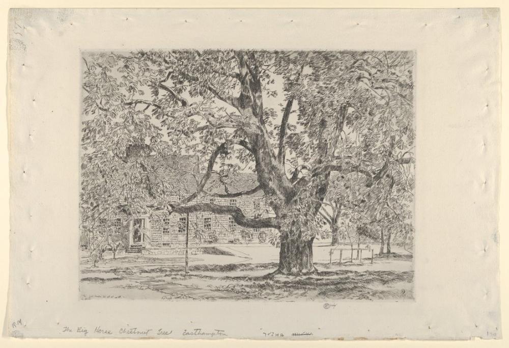 Childe Hassam, Büyük At Kestanesi Ağacı Easthampton, Kanvas Tablo, Childe Hassam, kanvas tablo, canvas print sales