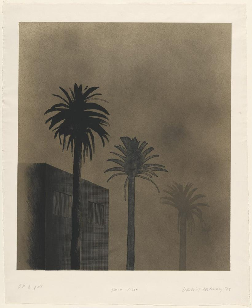 David Hockney, Karanlık Sis 1973, Kanvas Tablo, David Hockney, kanvas tablo, canvas print sales