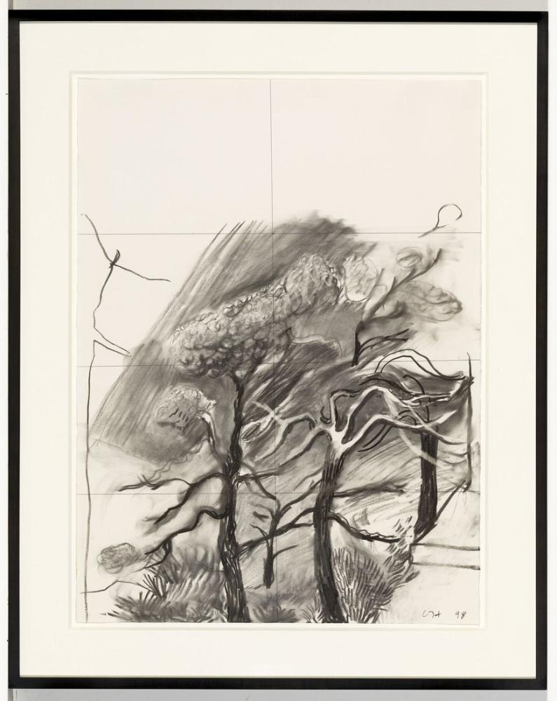 David Hockney, Ölü Ağaç 1998, Kanvas Tablo, David Hockney