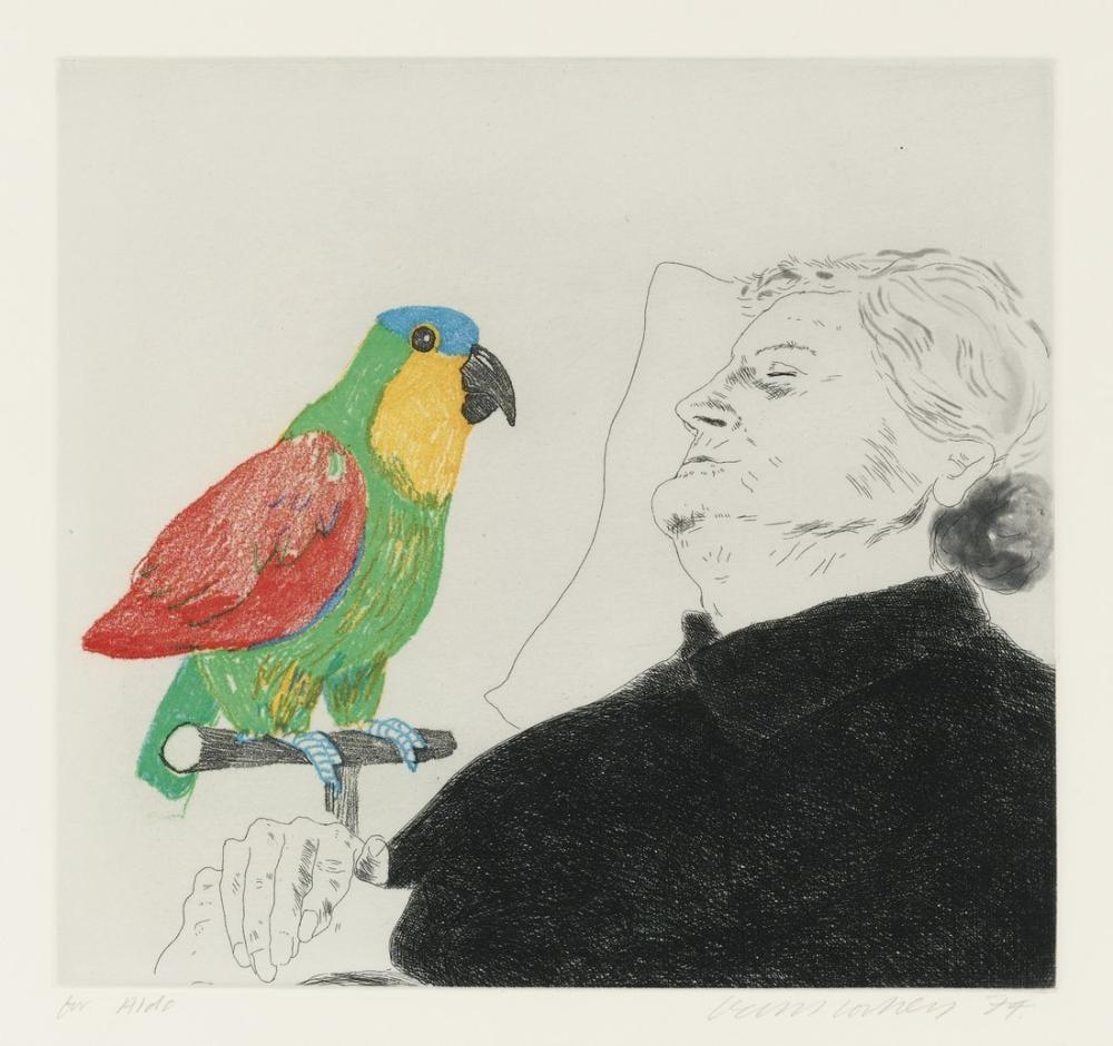 David Hockney, Tebrikler, Figür, David Hockney