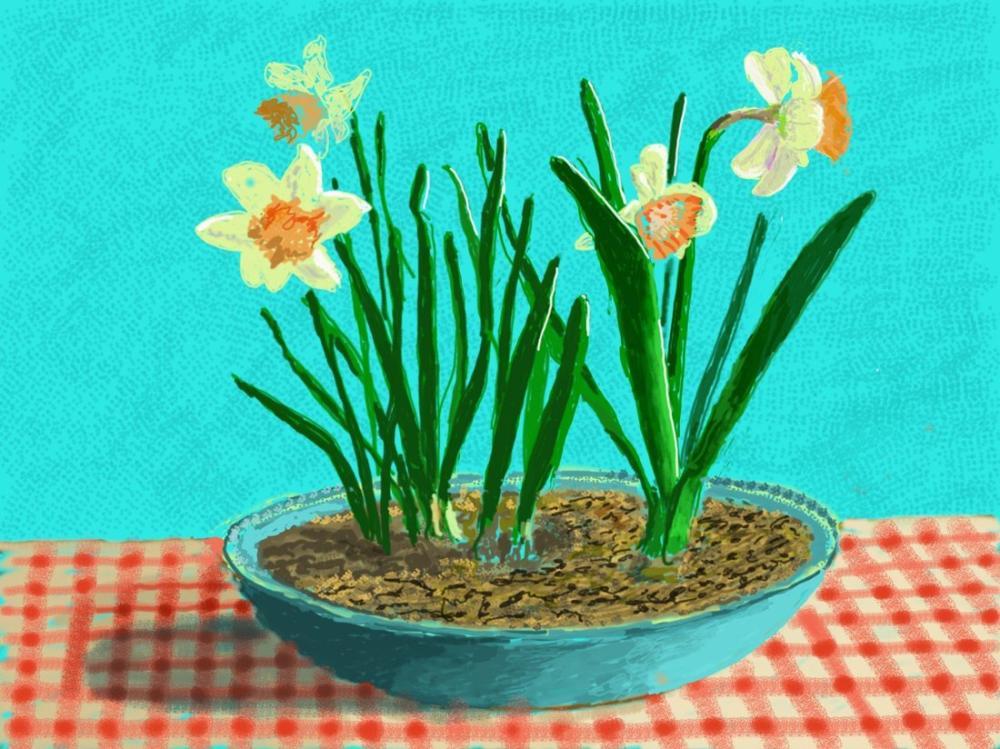 David Hockney, Masadaki Çiçekler, Kanvas Tablo, David Hockney