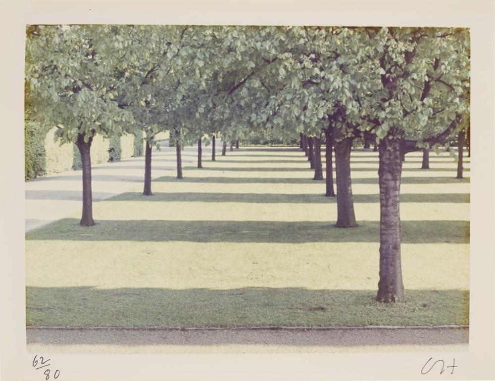 David Hockney, Herrenhauser Parkı, Kanvas Tablo, David Hockney, kanvas tablo, canvas print sales