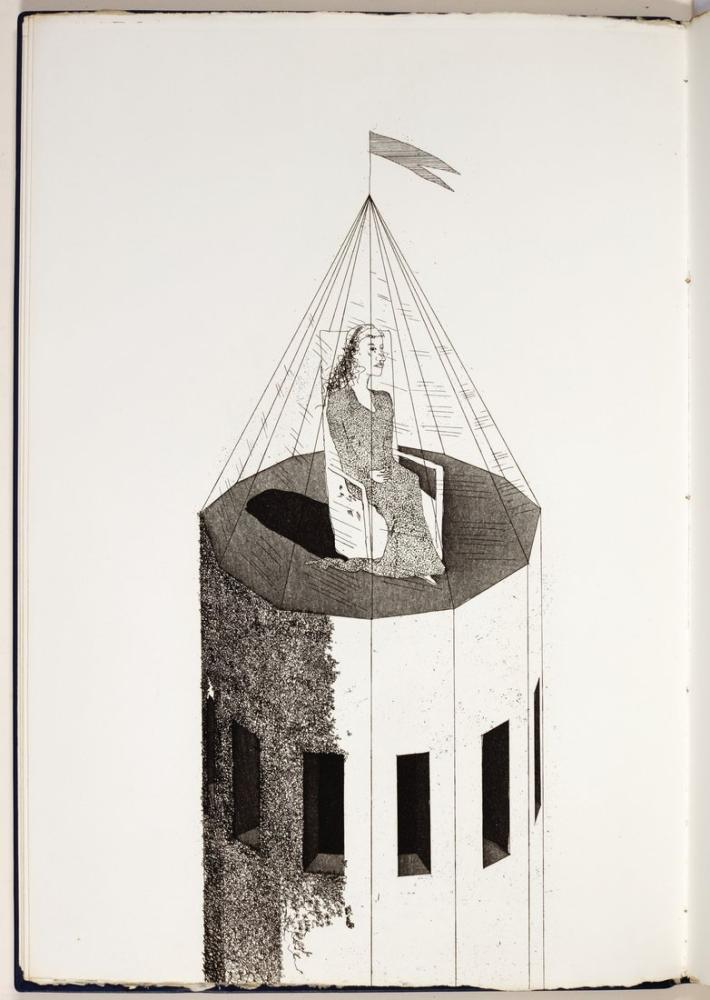 David Hockney, Küçük Deniz Tavşanı Grimm Kardeşler, Figür, David Hockney