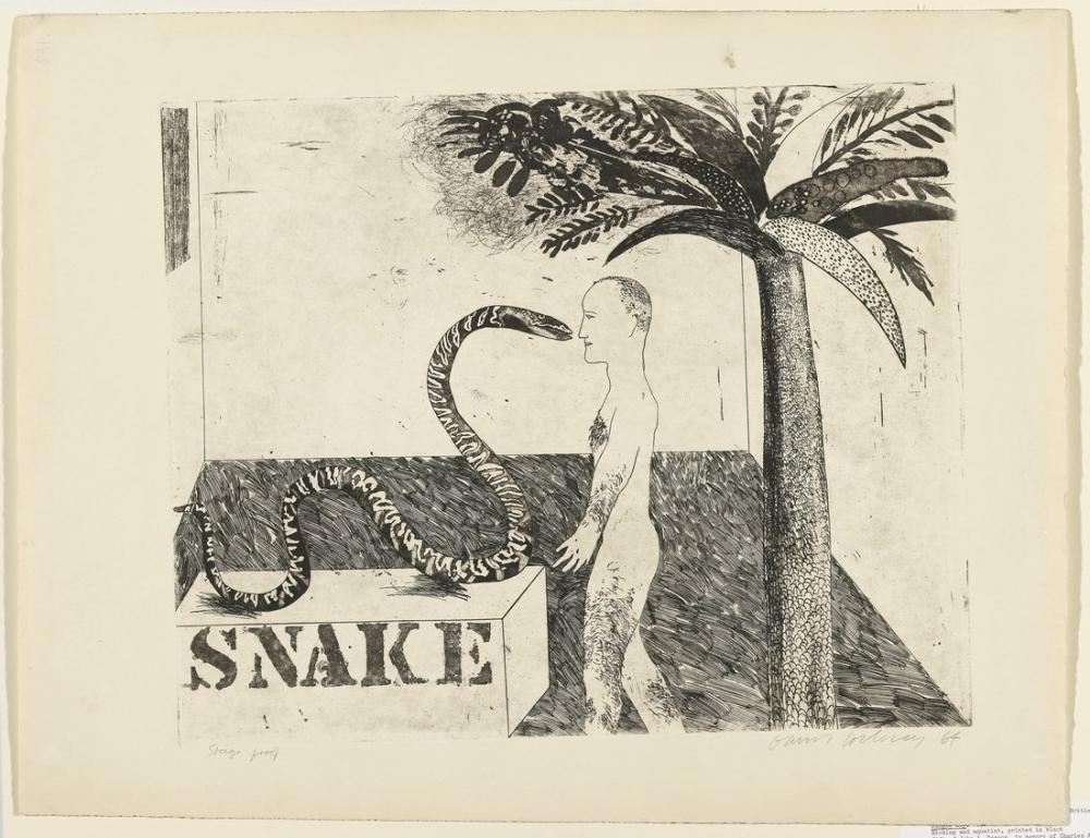 David Hockney, Snake, Figure, David Hockney, kanvas tablo, canvas print sales
