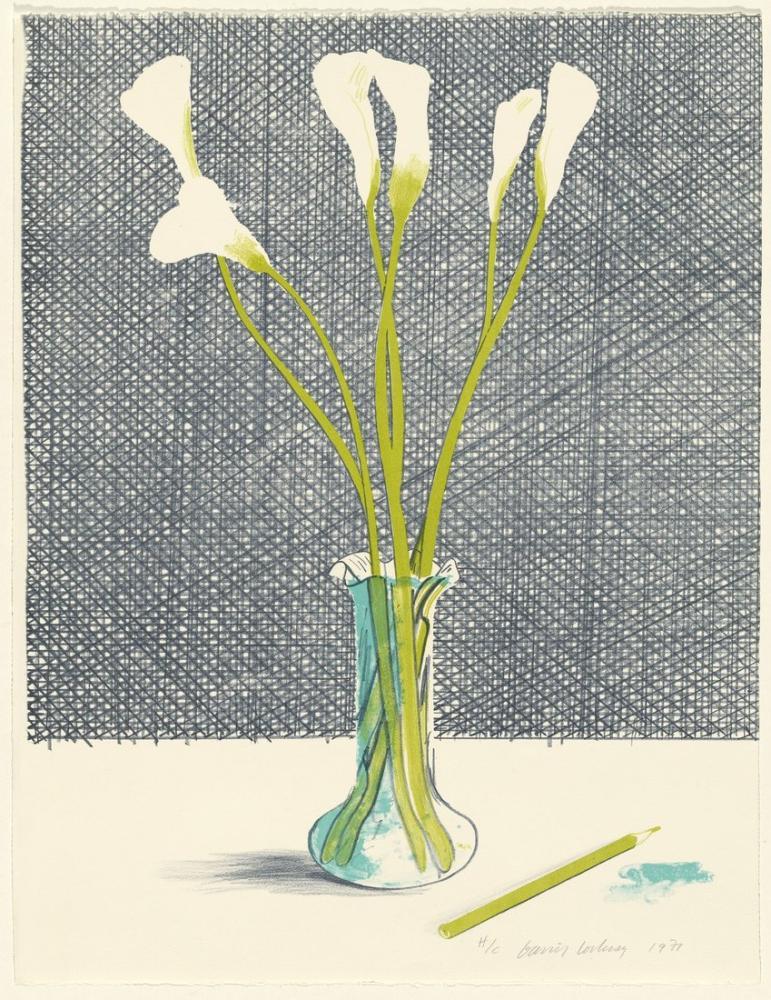 David Hockney, Natürmort 1971, Kanvas Tablo, David Hockney