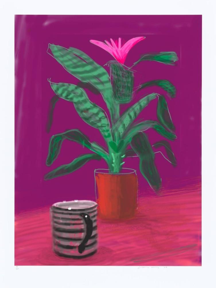 David Hockney, Striped Mug 2010, Canvas, David Hockney, kanvas tablo, canvas print sales