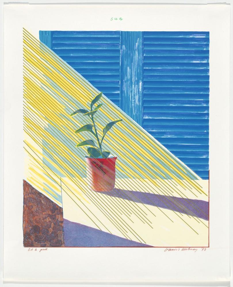 David Hockney, Güneş, Kanvas Tablo, David Hockney