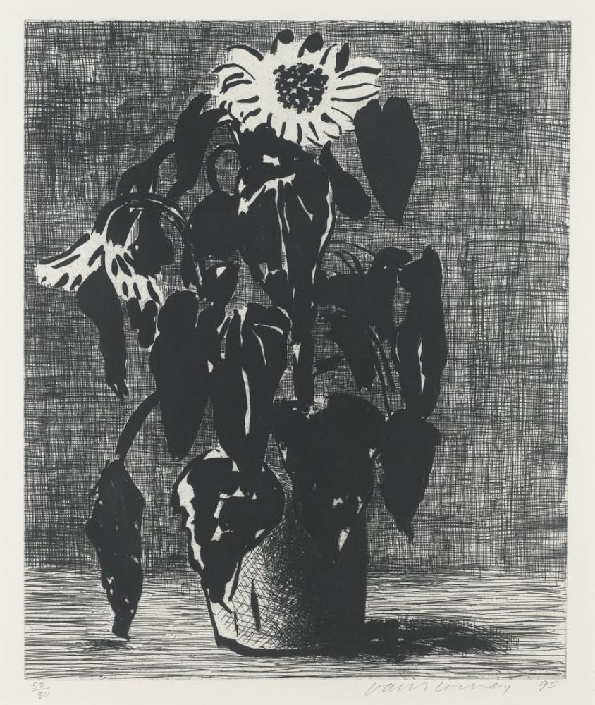David Hockney, Ayçiçeği I, Kanvas Tablo, David Hockney
