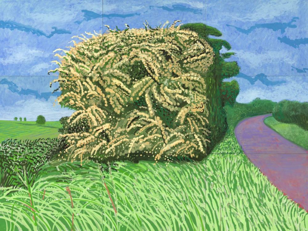 David Hockney, Büyük Hawthorne, Figür, David Hockney