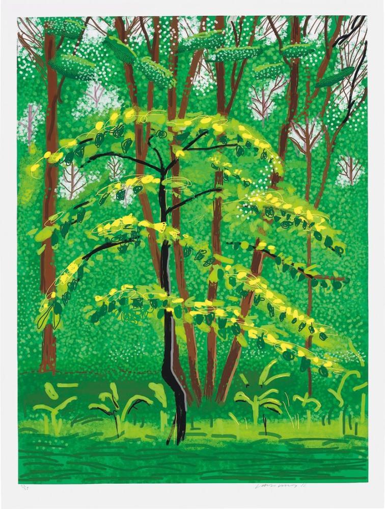 David Hockney, Trees, Canvas, David Hockney, kanvas tablo, canvas print sales