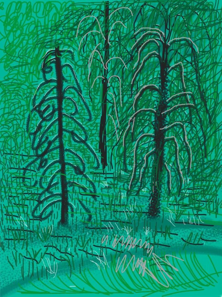 David Hockney, Yosemite Suite, 2010'dan İsimsiz No 16, Figür, David Hockney