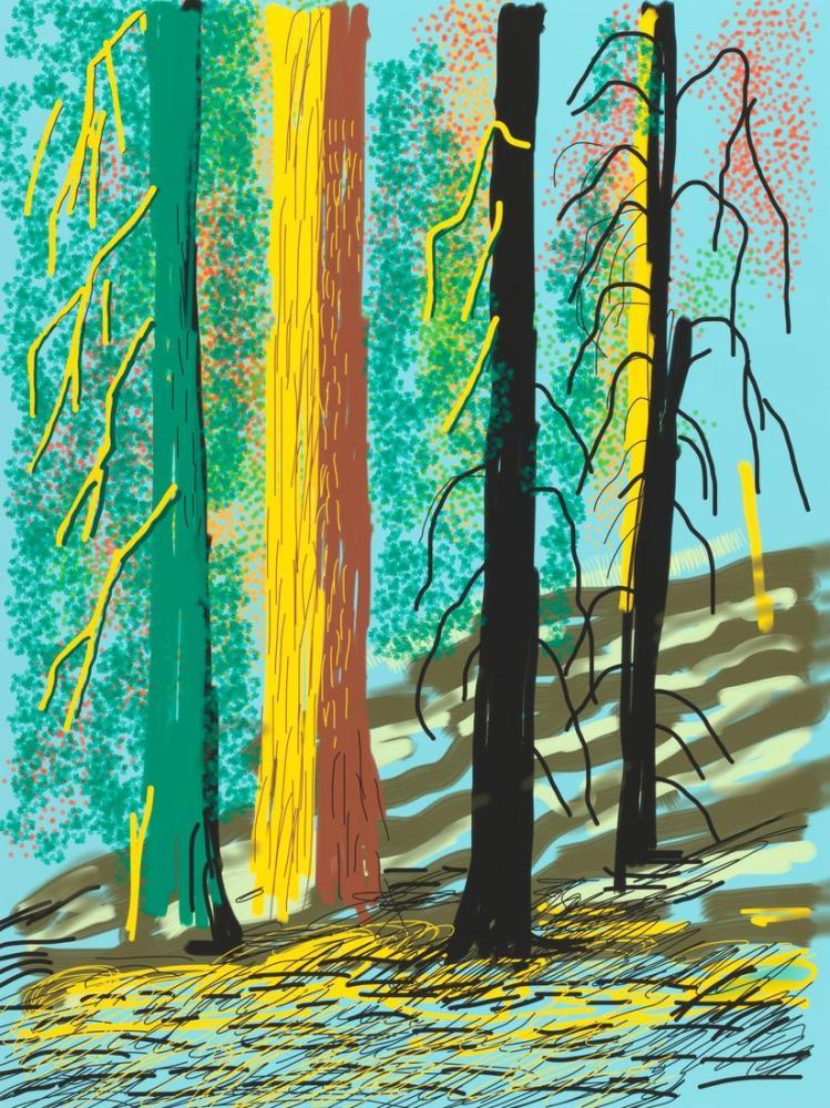 David Hockney, Untitled No 7 from the Yosemite Suite, 2010, Figure, David Hockney, kanvas tablo, canvas print sales