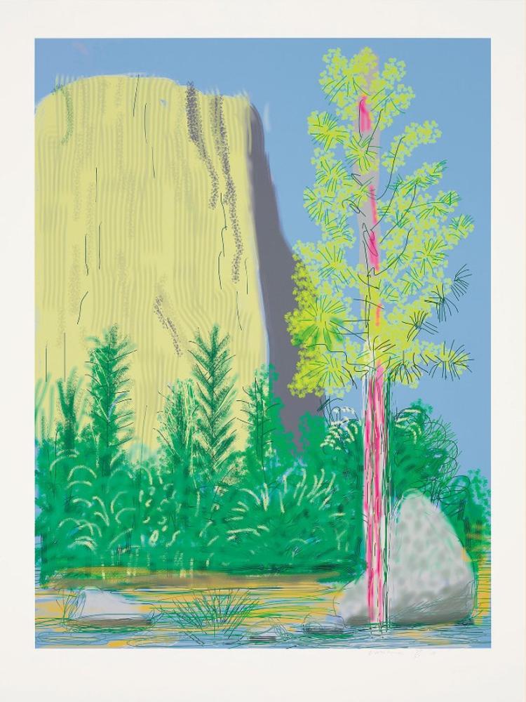 David Hockney, Untitled No 22 from the Yosemite Suite, 2010, Figure, David Hockney, kanvas tablo, canvas print sales