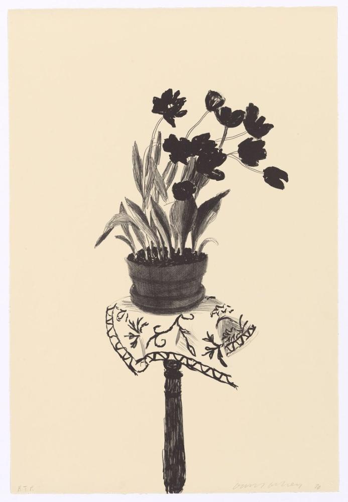 David Hockney, Siyah Laleler 1980, Kanvas Tablo, David Hockney