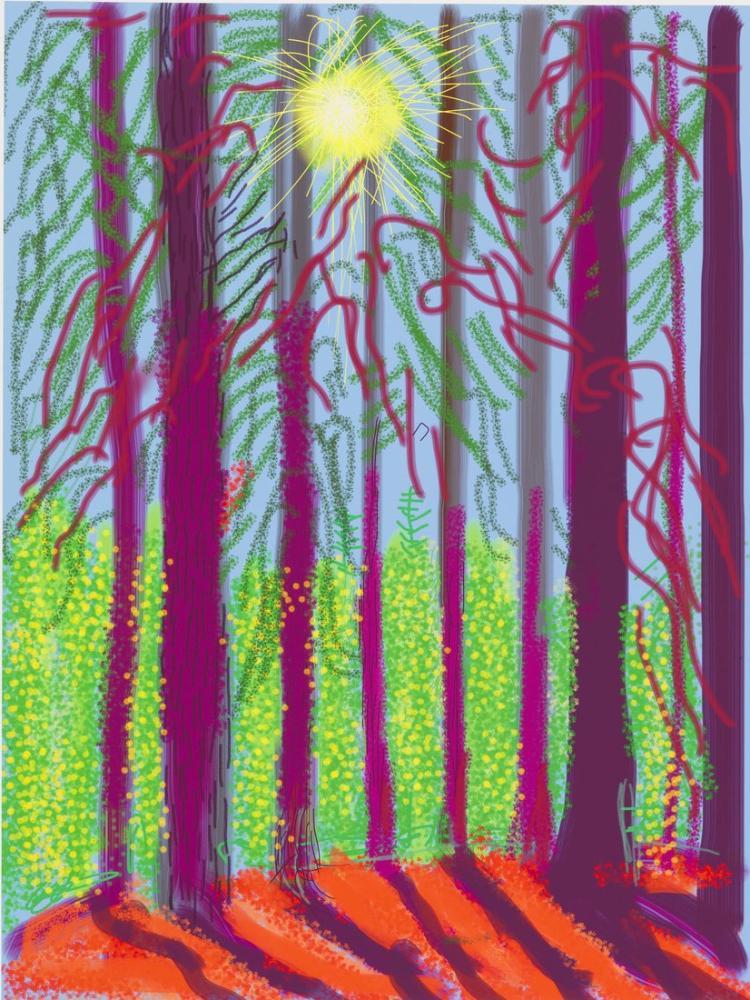 David Hockney, Yosemite, Figür, David Hockney