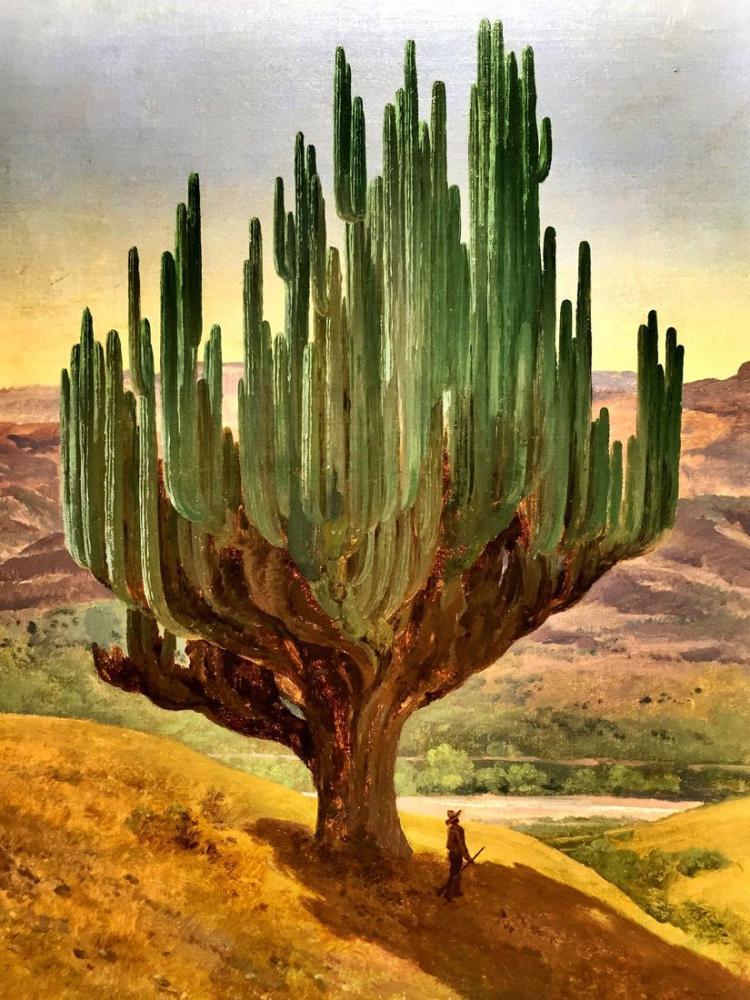 Diego Rivera, Kaktüs, Figür, Diego Rivera