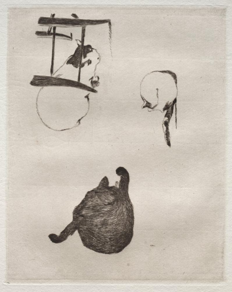 Edouard Manet Kediler, Kanvas Tablo, Édouard Manet, kanvas tablo, canvas print sales