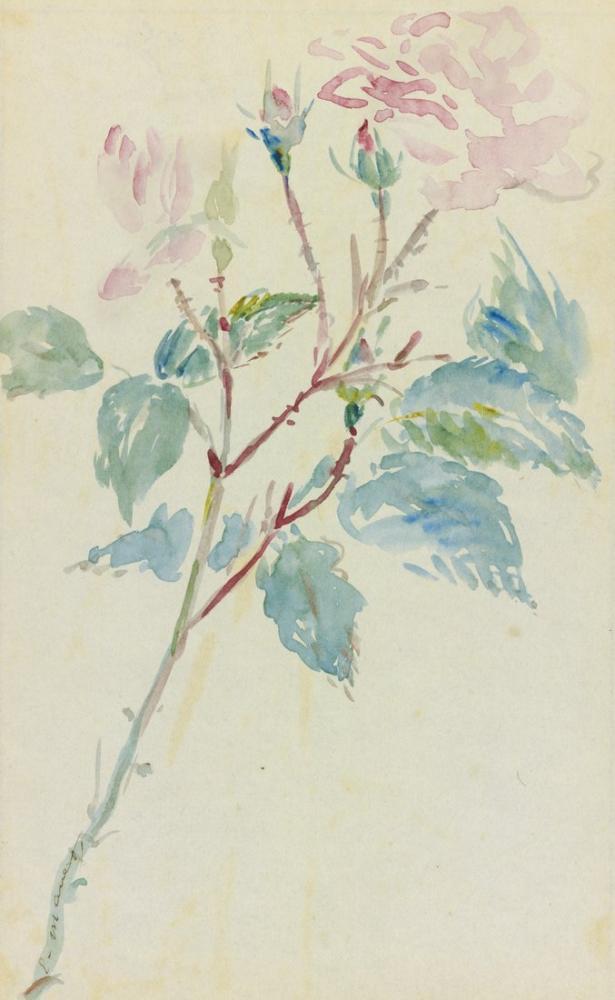 Edouard Manet Yaban Gülü, Kanvas Tablo, Édouard Manet, kanvas tablo, canvas print sales