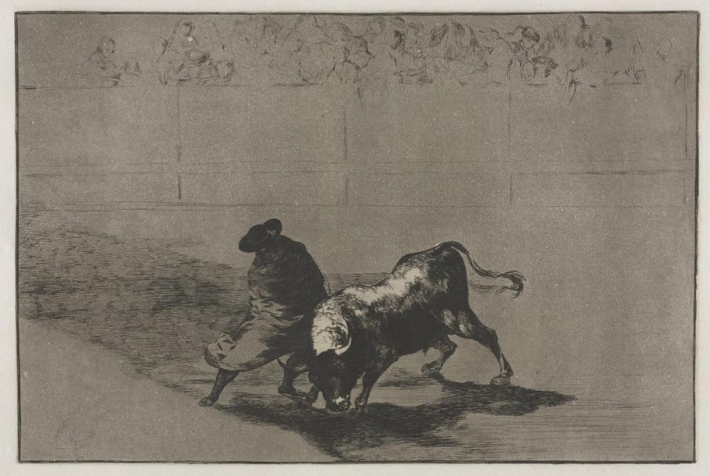 Francisco Goya, Boğa Güreşi Pelerin Numarasına Sarılmış Çok Becerikli Şahin Öğrencisi, Kanvas Tablo, Francisco Goya, kanvas tablo, canvas print sales
