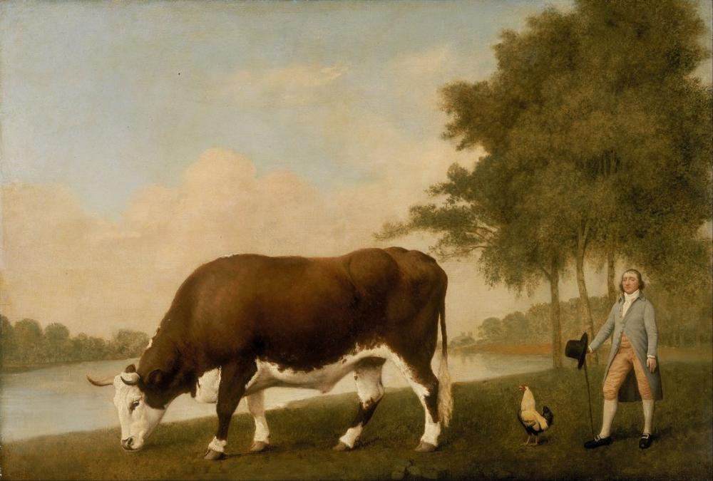 George Stubbs, The Lincolnshire Ox, Canvas, George Stubbs, kanvas tablo, canvas print sales
