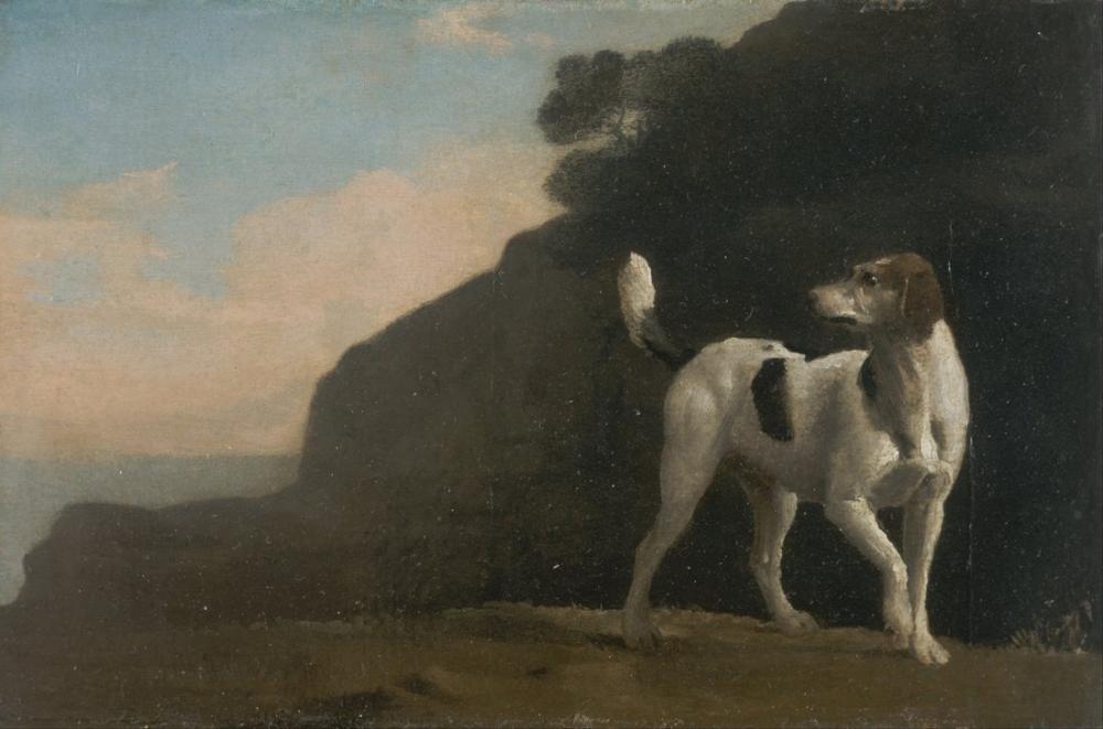 George Stubbs, Foxhound II, Canvas, George Stubbs, kanvas tablo, canvas print sales