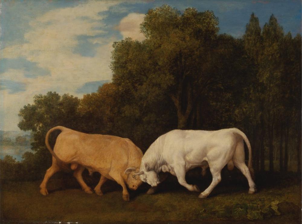 George Stubbs, Bulls Fighting, Canvas, George Stubbs, kanvas tablo, canvas print sales