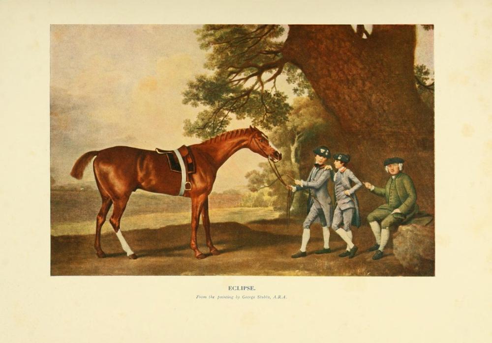 George Stubbs, Atın Yeni Kitabı, Kanvas Tablo, George Stubbs, kanvas tablo, canvas print sales