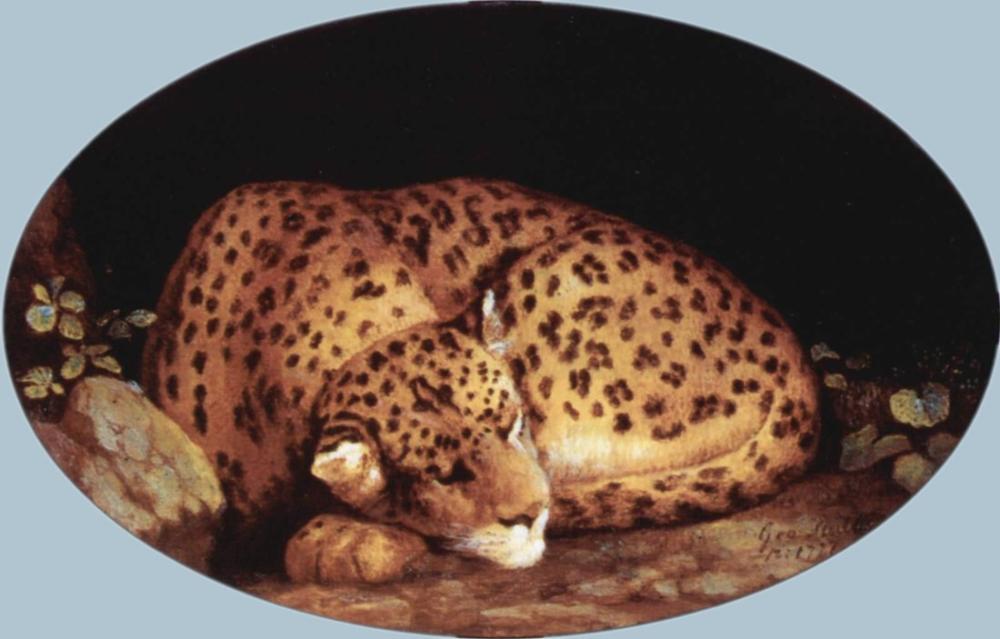 George Stubbs, Leopard, Canvas, George Stubbs, kanvas tablo, canvas print sales