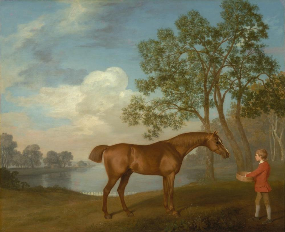 George Stubbs, Pumpkin with A Stable Lad, Canvas, George Stubbs, kanvas tablo, canvas print sales