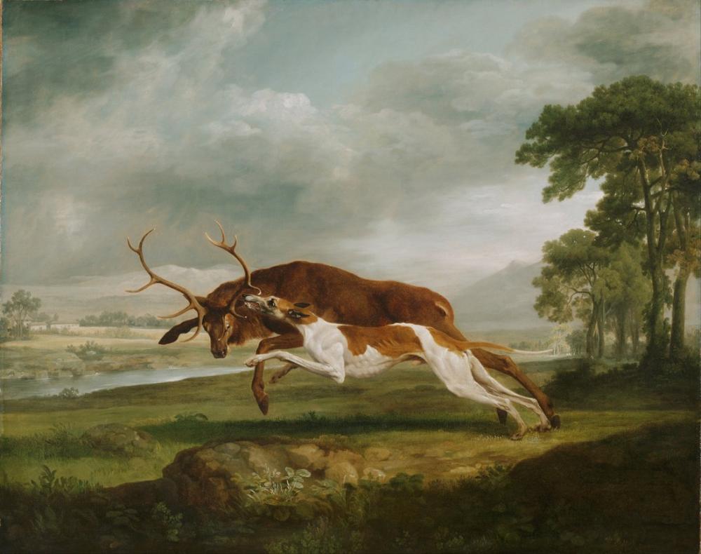 George Stubbs, İngiliz Tazı Bir Geyik Kovalıyor, Kanvas Tablo, George Stubbs, kanvas tablo, canvas print sales