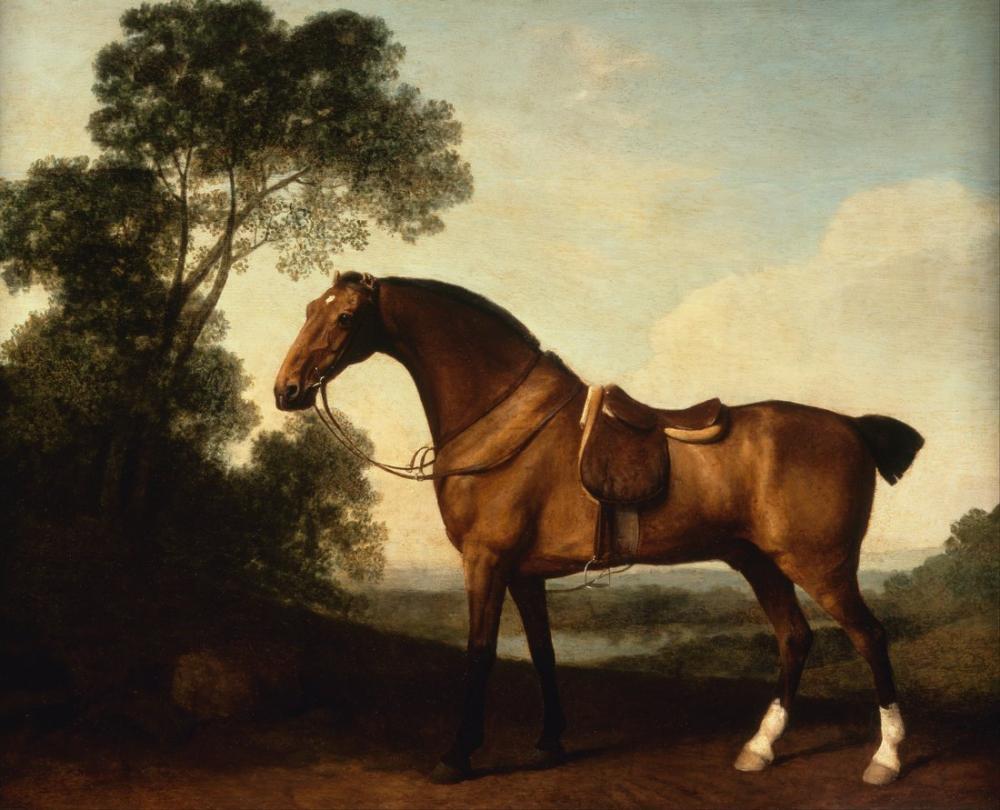 George Stubbs, Semer Vurulmuş Bir Doru Avcı, Kanvas Tablo, George Stubbs, kanvas tablo, canvas print sales