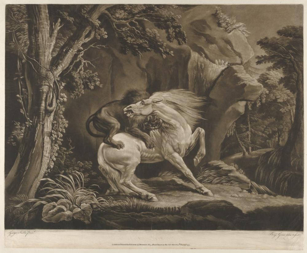 George Stubbs, The Lion and Horse, Canvas, George Stubbs, kanvas tablo, canvas print sales
