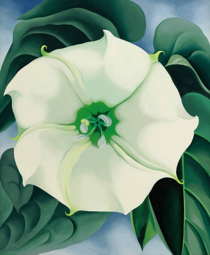 Georgia O Keeffe, Jimson weed, Canvas, Georgia O Keeffe, kanvas tablo, canvas print sales
