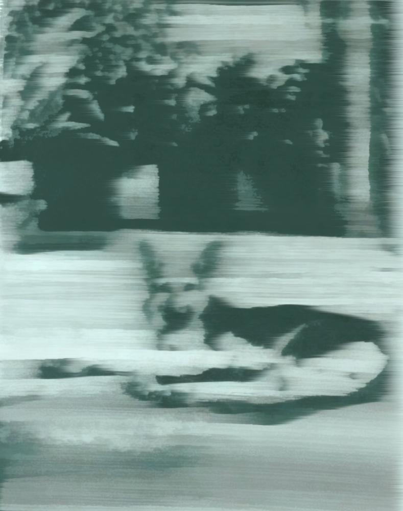 Gerhard Richter, Hund Köpek 1965, Kanvas Tablo, Gerhard Richter, kanvas tablo, canvas print sales
