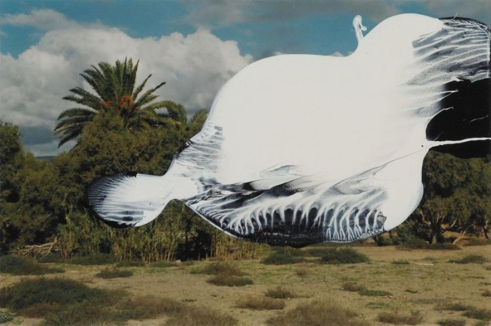 Gerhard Richter, İsimsiz, 1992, Kanvas Tablo, Gerhard Richter, kanvas tablo, canvas print sales