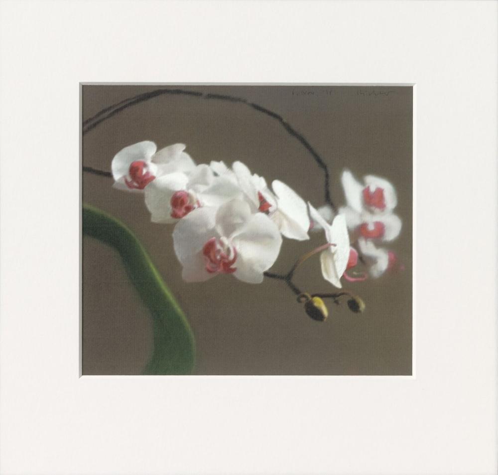 Gerhard Richter, Orkide VI, Kanvas Tablo, Gerhard Richter, kanvas tablo, canvas print sales