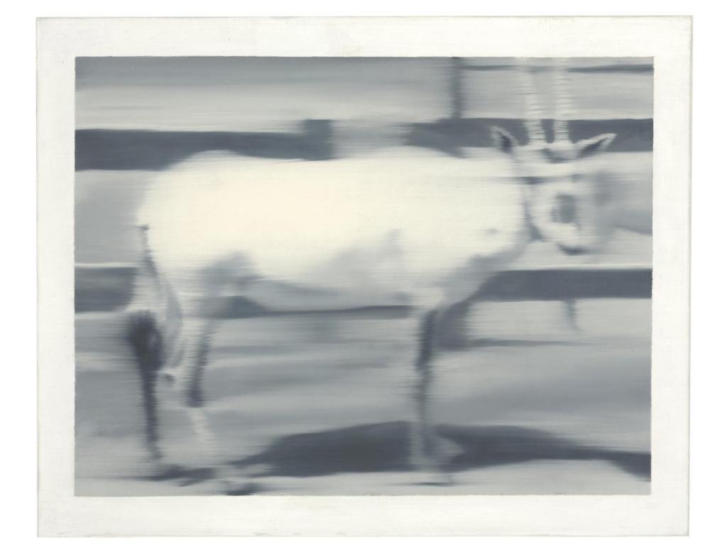 Gerhard Richter, Kılıç Antilop, Kanvas Tablo, Gerhard Richter, kanvas tablo, canvas print sales